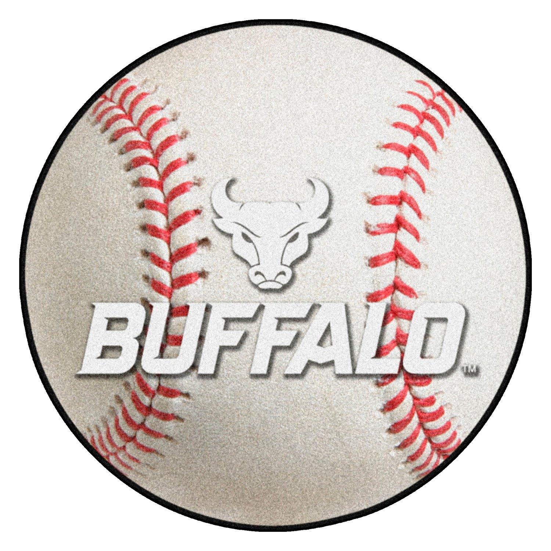 FANMATS NCAA Quincy University Hawks Nylon Face Baseball Rug